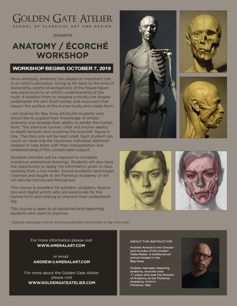 anatomy ecorche flier 2019 2020 finished